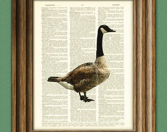 Canadian Goose Art Print over an upcycled vintage dictionary page book