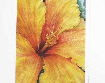 orange flower art print, hibiscus botanical watercolor, 5x7 nature art print