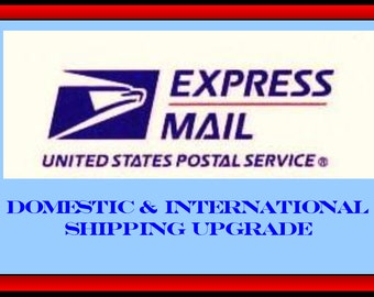EXPRESS SHIPPING UPGRADE  : Use this listing for Domestic (next Day) or International (10+ days)shipping in addition to your order Christmas