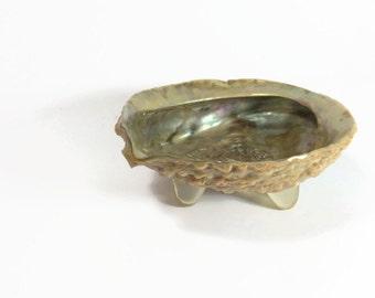 Mid century modern abalone shell dish ash tray on atomic acrylic resin feet