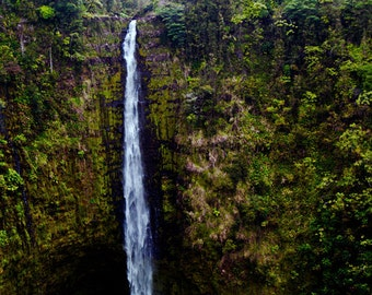 Akaka Falls- fine art photography- Hawaii photography- waterfall photography- nature photography- landscape- wall art- home decor- gift