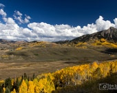 CANVAS: Valley of Golden Aspens in Crested Butte, Colorado (photograph)