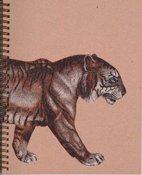 Tiger Sketchbook (Blank Book)