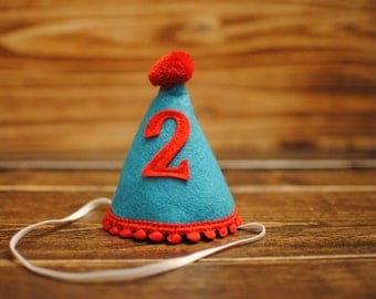 Mini Custom Birthday Party Hat with floral trim Made from Soft Wool Felt Cat in the Hat Party