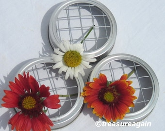 3 Mason Jar Lid Flower Frogs for Mason Jars