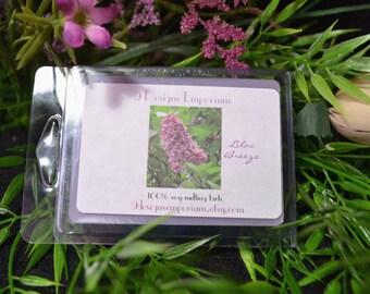 Lilac Breeze - Breakaway Clamshell Soy Melting Tarts