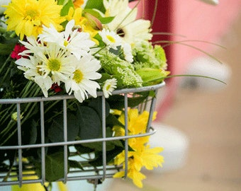 Bike Basket Bike Photography , Summer Photography , Flowers, Flower Basket, Bike Art , Yellow, White, Country Chic, Blue, Pink