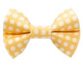 "Cat Bow Tie - ""The Fashion Designer"" -  Yellow Polka Dot"