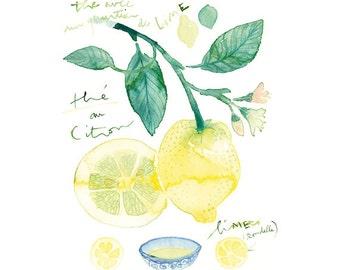 Lemon tea poster, Citrus print, Kitchen wall art, Food art, Pastel home decor, watercolor painting, 8X10