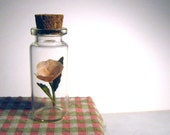 Miniature pink paper flower sculpture rose in a tiny jar