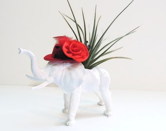 Mary - Lou the white elephant planter with air plant and fancy hat.