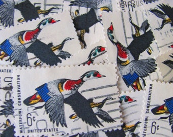 Duck Dynasty 30 Vintage US Postage Stamps Wood Duck Waterfowl Conservation Ornithology Bird Twitter Tweet Mississippi MS Scrapbook Philately