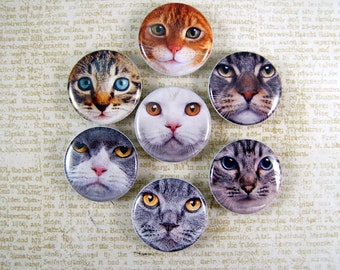 "Cat Magnets, Cat Pins, Cat Cabochons, Cat Face Magnets, Cat Face Pins, 1"" Inch Flat, Hollow Backs, Cabochons, 12 ct. Set A"