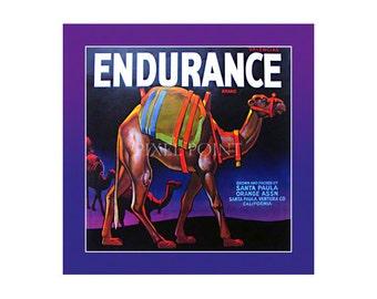 Small Journal - Endurance Brand - Fruit Crate Art Print Cover