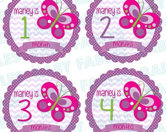 PERSONALIZED Monthly Baby Stickers Baby Month Stickers Baby Girl Month Stickers Monthly Photo Stickers Monthly Milestone Stickers
