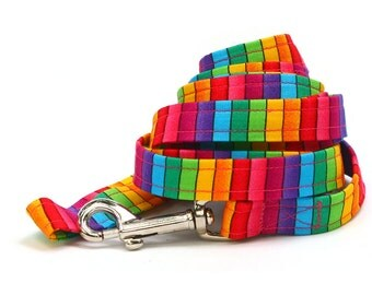 Matching 5 ft Leash - Bright Rainbow Stripes