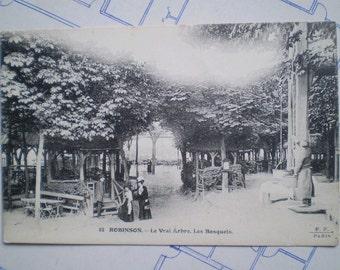 Robinson - 1916 - Le Vrai Arbre - Antique French Postcard