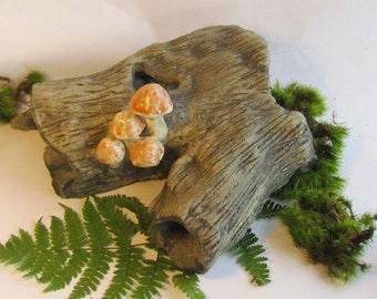 handmade woodland log dead tree with mushrooms aquarium fish house fish cave