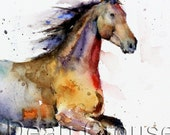"""HORSE 16 x 20"""" Colorful Watercolor Print by Dean Crouser"""