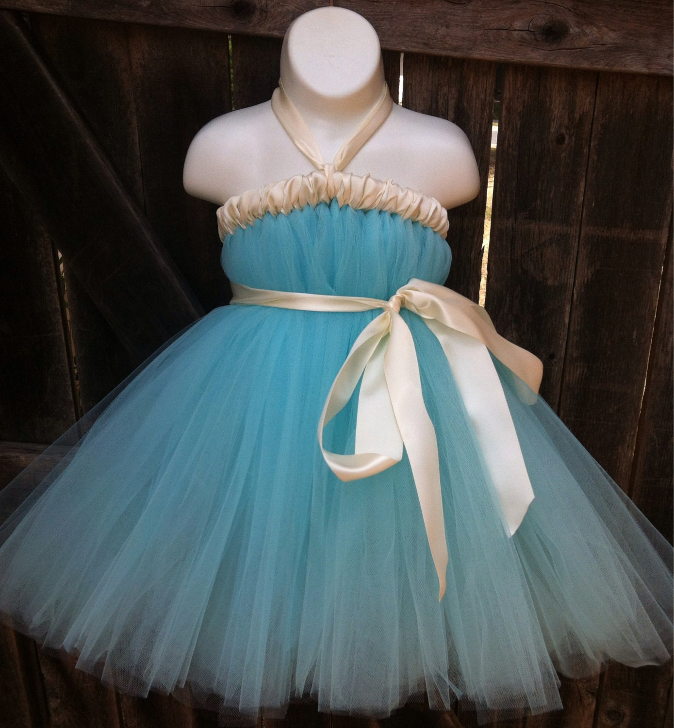 Flower Girl Dress Evelynn Aqua Blue Tutu Dress by