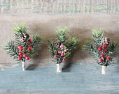 Wedding Boutonniere, Holiday, Groom, Rustic Pine and Berry, Gold Twine, Pine cone, Christmas, Winter Wedding