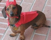 Small Dog Devil Dog Cape / Slides over the Collar Small, Medium and Large Sizes