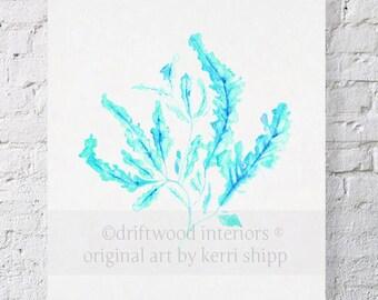 Seaweed in Turquoise Print