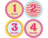 Baby Announcement, Monthly Baby Stickers, Monthly Baby Photos, Baby Gift, Baby Month Stickers, Monthly Stickers, Bright Pink (G079)