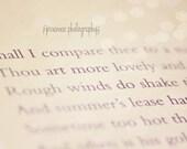 Shakespeare Quote, Sonnet Art, Sonnet XXVII, Shakespeare Quote Art, Shakespeare Sonnet Print, Photography Quote, Shakespeare Art