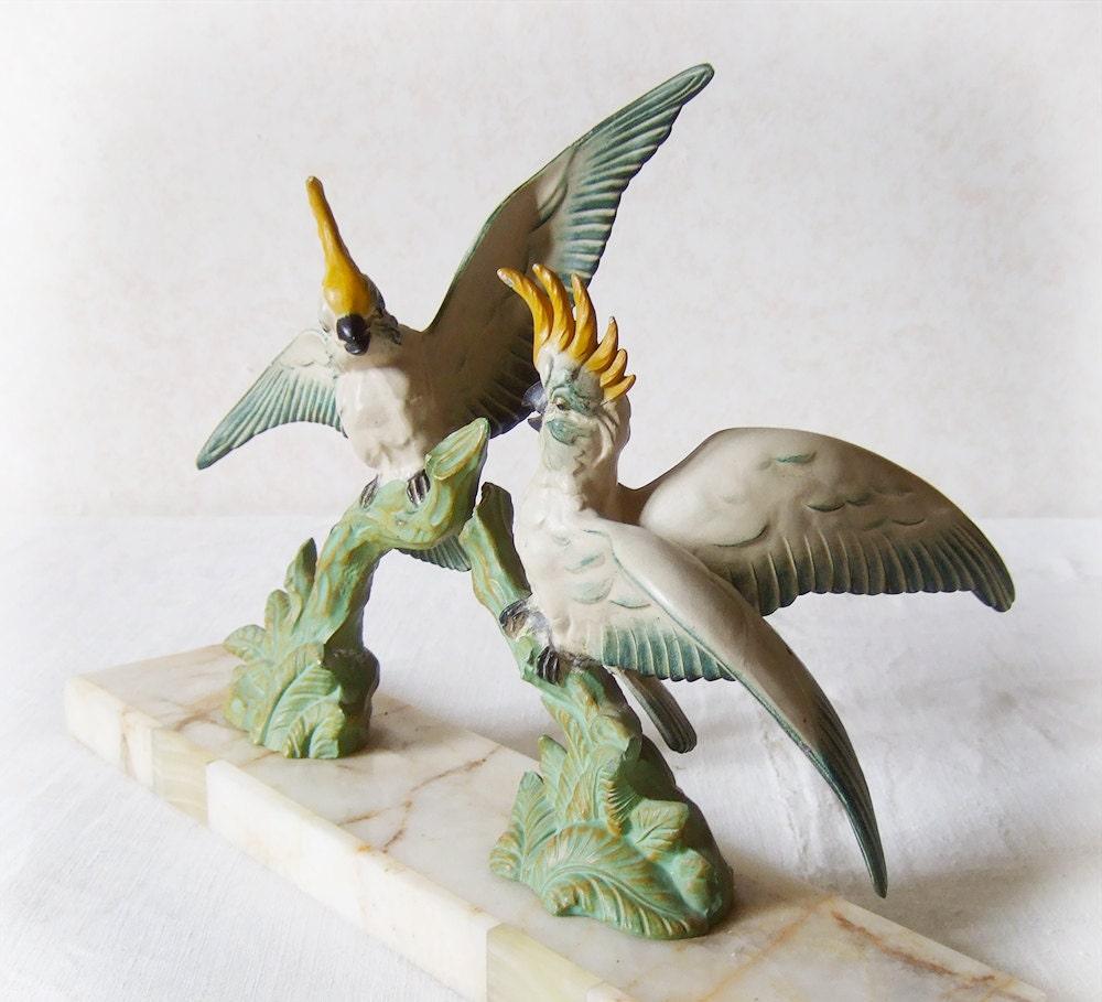 Cockatoo Muzzle 41