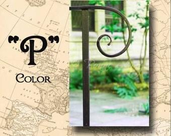 Letter P Alphabet Photography Color 4 x 6 Photo Letter Unframed