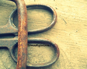 Alphabet Letter B Photograph Digital Snips Instant Download 5 Photographs