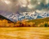 Colorado Gold - 24x30 Canvas Gallery Wrap