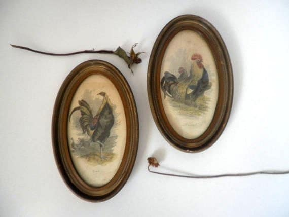 pair of vintage framed poultry wall hangings .  vintage classification