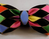 Dog Bow Tie or Flower - Mardi Gras