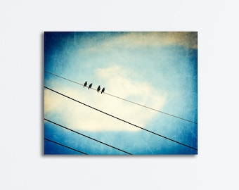 "Blue Bird on Wire Canvas Photography - beige cream black, blue canvas gallery wrap, modern wall art, nature photo print, ""Four of a Kind"""