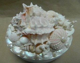 Pretty in Pink Seashell Topped Box