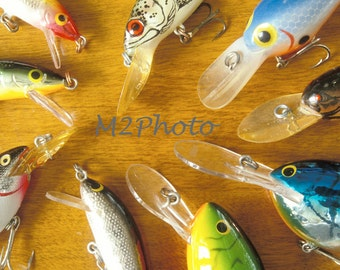 Bass Plug Fishing Lure Collection - Fisherman's gift - The Artistic Angler Series - Photo note card