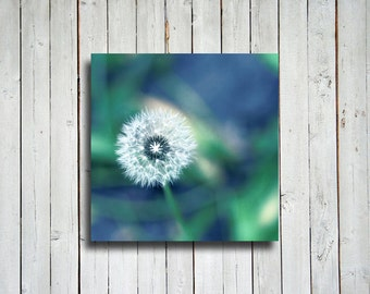 Summer Dandelion - Blue and Green decor - Dandelion decor - Dandelion canvas - Dandelion art - Blue art - Blue and green art