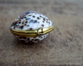 Vintage Limpet Shell Hinged Pill Box / Coin Purse / Snuff Box / Trinket Ring Box