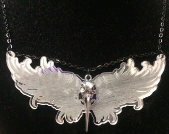 Bird skull and wings