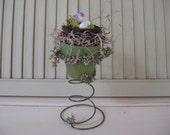 Bird in Nest Old Bed Spring Sitter Terra Cotta Pot Moss Purple Bird Pink Green Vine