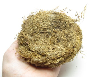 Bird's Nest Decoration Natural Grass Nests for Craft Projects, Floral Arrangements - Large