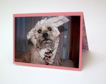 Funny Get Well Card, Cairn Terrier Sick Card, Feel Better Card