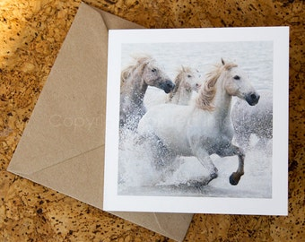 THUNDER, Camargue horses, Art Card, Horse Greeting card, Equine photography, Nautical Equine