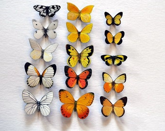 Butterfly Moth Magnets Set of 15 Insects Refrigerator Magnets Kitchen Magnets