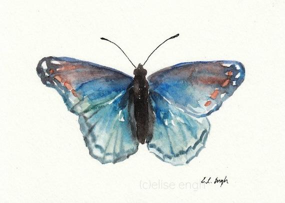 Blue and Orange Original Watercolor Butterfly Specimen Art Painting, 5x7