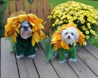 Unique Sunflower Dog Halloween Costume for small-medium breed dogs