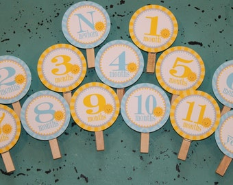 LITTLE SUNSHINE 1st Birthday Photo Clips Banner Newborn - 12 months - Party Packs Available
