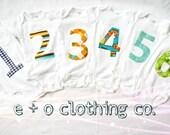 Month to Month Onesies, Children's Clothing, Boutique Baby Shower Gift, Newborn, Appliqued Onesie- Monthly Onesies 6 months